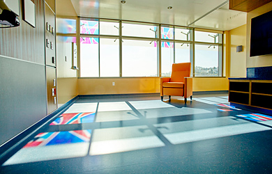 Stained glass displays in BMT patient room